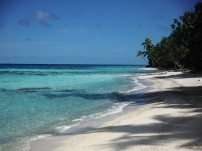 29 South Pacific beauty
