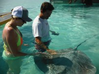 Will and Katharine pet the sting ray