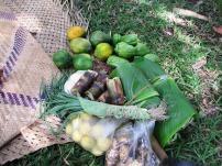 Fresh vegetables from the village garden