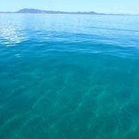 Morning swim at Trial Bay