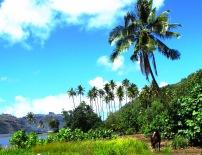 12 Beautiful scenery