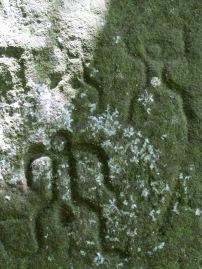 22 Petrogliph
