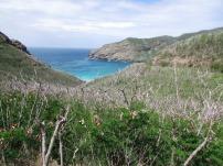 40 Hike to Nono fly beach