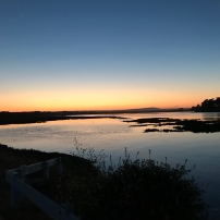 Sunset over the Slough - Moss Landing
