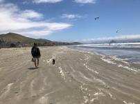 12km beach walk