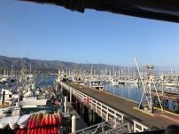 Best Harbour!